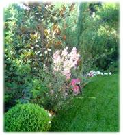 Αρχική φιλοσοφία κέντρο κήπου greenroof